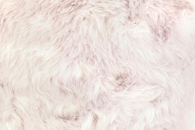 hvid kaninpels